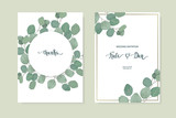 Floral card set with eucalyptus leaves. Greenery frame.Rustic style. For wedding, birthday, party, save the date. Vector illustration. - 200344283