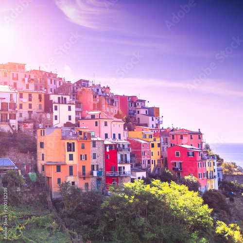 Foto op Plexiglas Purper Third village of the Cique Terre (Italy) sequence of hill cities - Corniglia during sunset