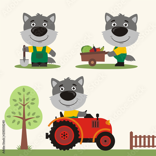 Fototapeta Set of funny wolf farmer with shovel, with wheelbarrow with vegetables, in farm tractor. Collection of wolf is working on the farm.
