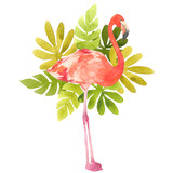 Watercolor illustration with a bird flamingo. Beautiful pink bird and tropical leafs. Tropical flamingo. - 200365684