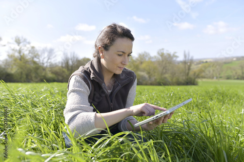 Foto Murales Agronomist in crop field using digital tablet