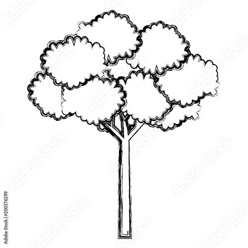 tree plant natural icon vector illustration design
