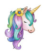 Cute, magic unicorn portrait, isolated on white.