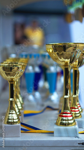 Foto op Plexiglas Kiev Awards, cups, medals and trophies to the winners at the exhibition of dogs in Kiev Ukraine