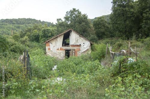 Fotobehang Weg in bos Bahçelerdeki evler.