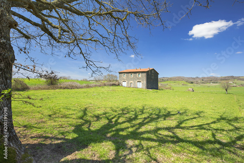 view to old house through tree branches in spring day in Tuscany in Italy
