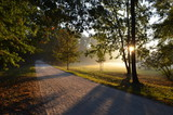 jesienny park o wschodzie słońca, Polska - 200399864