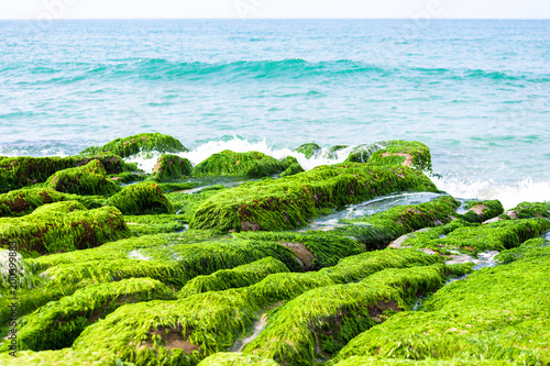 Foto op Plexiglas Lime groen Laomei Green Reef - Taiwan North Coast seasonal features, shot in Shimen District, New Taipei, Taiwan.