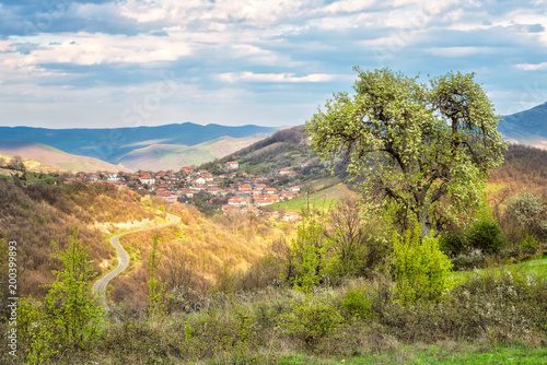 Foto Murales Spring is coming... /