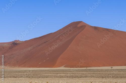 Dunes in the Namib Desert / Dunes in the Namib Desert to the horizon, Sossusvlei, Namibia, Africa. - 200419028