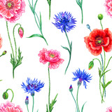 Seamless pattern of cornflowers and poppies, watercolor painting on white background.