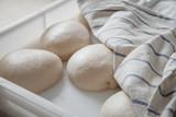 sfere di pasta lievitata nel vassoio