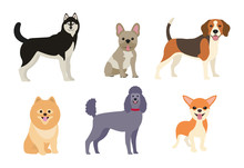 Different Dogs   Illustration Sticker