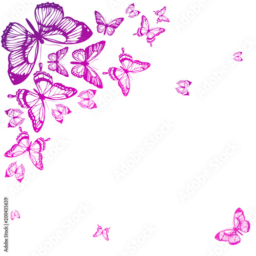 beautiful pink butterflies, isolated  on a white - 200435639