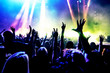 Quadro cheering crowd at a rock concert