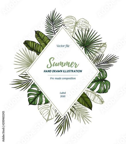 Lato tropikalny egzotyczny szablon. Etykieta z liśćmi palmowymi (monstera, areca, wachlarz, banan). Ręcznie rysowane ilustracji wektorowych. Idealny do wydruków, plakatów, zaproszeń, opakowań itp