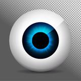 Eye, blue. Realistic 3d indigo eyeball vector illustration. Real human iris,pupil and eye sphere. Icon on transparent background. Isolated macro color eyeball. Character eyes design. Anatomy close up.