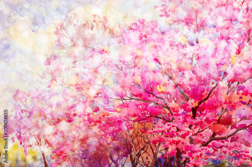 Aluminium Candy roze Painting floral composition Sakura or Wild himalayan cherry.