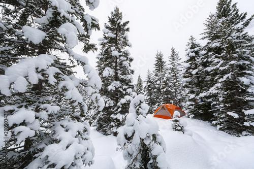 Foto Murales Camping Bivouac en forêt pendant l'hiver