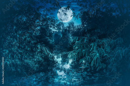 Plexiglas Nachtblauw Tranquil river with full moon and bamboo trees. Serenity nature background.