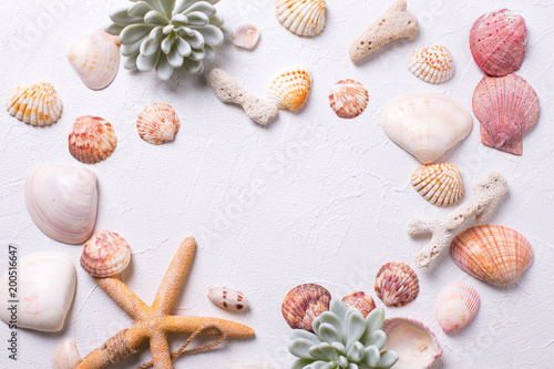 Frame from marine  decorations   on white textured  background.