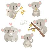 Koalas, vector animals, characters
