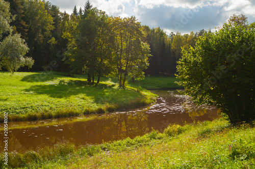 Aluminium Lente Spring sunny landscape. Spring trees at the bank of the forest river in sunny day
