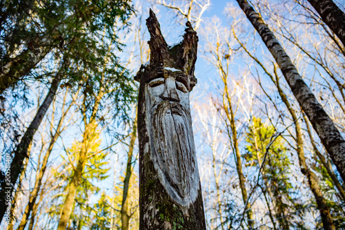 Slavic pagan idols on the forest temple. Veles © PhotoChur