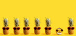 Leinwanddruck Bild - Series of pineapples and a coconut wearing sunglasses on a yellow background