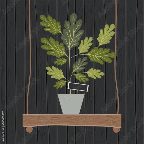 Roślina doniczkowa na huśtawce drewnianej dekoracji