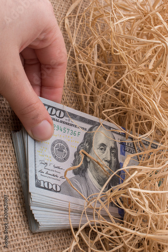 Banknote bundle of US dollar in a straw pile