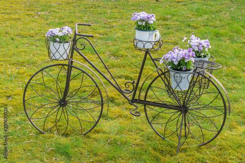 Foto Murales Deko Fahrrad mit Blumen auf einem Rasen