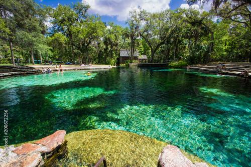 Aluminium Tropical strand Juniper Springs, Florida