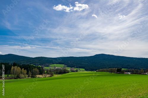 Krajobraz w bavarian lesie z drzewami, łąka i chmury w niebie