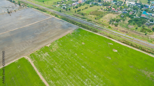 Aluminium Pistache Aerial view from flying drone of Field rice with landscape green pattern nature background / top view field rice