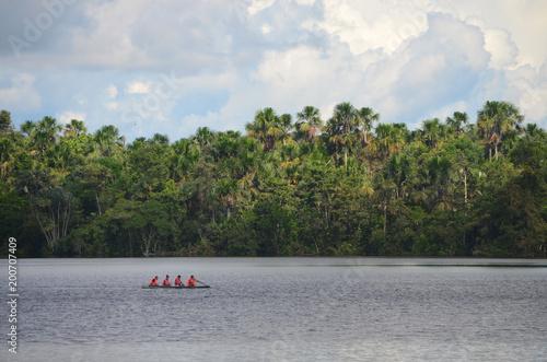 Krajobraz treeline amazonka tropikalny las deszczowy, od amazonki rzeki blisko Iquitos, Peru.