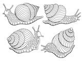 Snail escargot graphic black white isolated sketch set illustration vector - 200714642