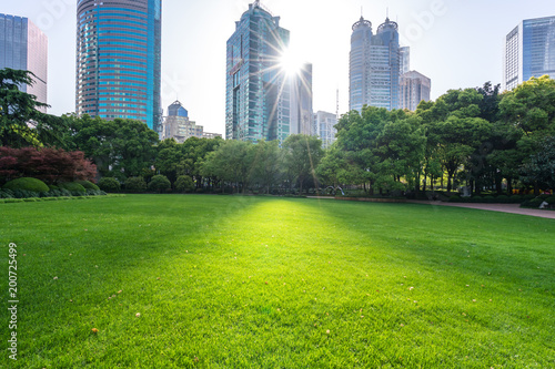 Foto Murales green lawn with modern building