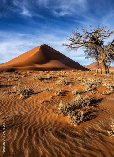 Dune 45 Namibia - 200730893