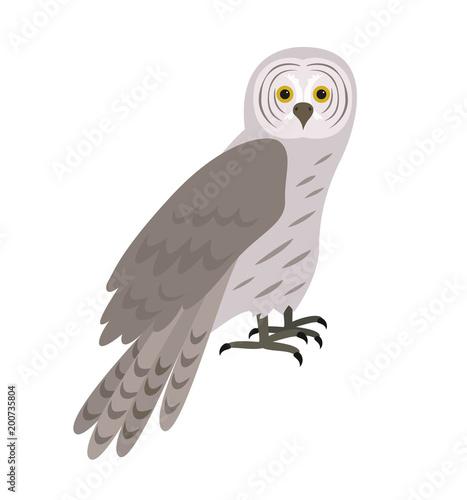 Keuken foto achterwand Uilen cartoon Cartoon owl icon on white background.