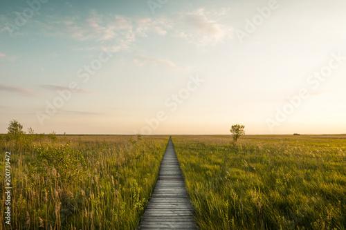 Footbridge through the Lawki swamp in Biebrza National Park, Poland
