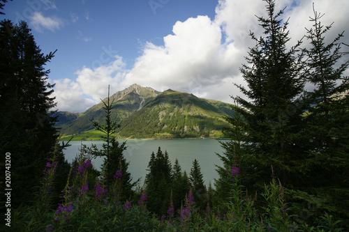 Foto op Plexiglas Zwart Blick auf einen Stausse in den Alpen mit Bergmassiv im Hintergrund