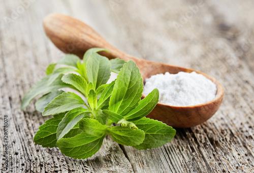 Stevia plant with powder © Dionisvera
