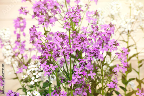 Lilac flowers on a bluring background