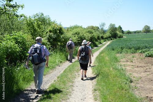 Deurstickers Wijngaard Wanderer bei Winningen an der Mosel