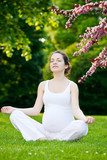 Beautiful pregnant woman relaxing in the spring park - 200805256