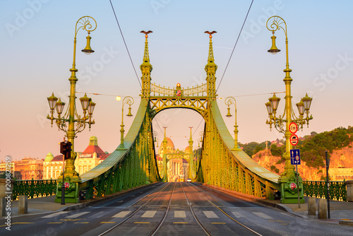 Foto Murales Liberty bridge in Budapest, morning