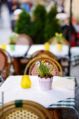 Outdoor cafe on sunny spring day with natural flowers in pot - 200827459
