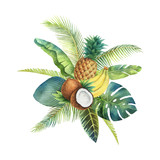 Watercolor vector organic bouquet of fruits and palm trees isolated on white background. - 200841449