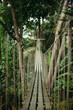 empty wooden suspension bridge in jungle
